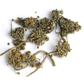 Tienchi Flower Tea
