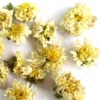 White Chrysanthemum Tea